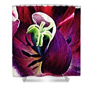 Dark Tulip Macro Shower Curtain