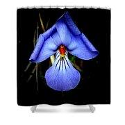 Dark Violet Shower Curtain