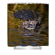 Dark Water Predator Shower Curtain