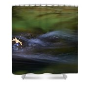 Dark Waters Shower Curtain by Mike  Dawson