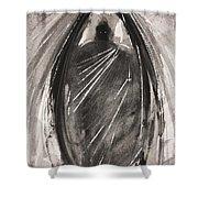 Dark Winged Demon Shower Curtain