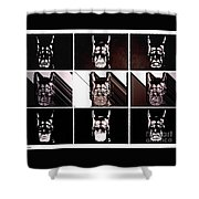 Darkbat Shower Curtain