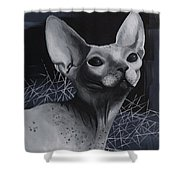 Darkness Cat Shower Curtain