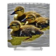 Darling Ducks Shower Curtain