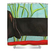 Dash Hound Shower Curtain