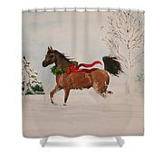 Dashing Thru The Snow Shower Curtain