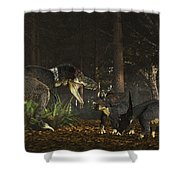 Daspletosaurus Confronts A Family Shower Curtain