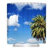 Date Palm Treetop Shower Curtain