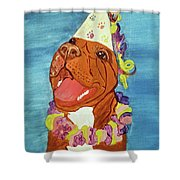 Date With Paint Feb 19 Kayna Shower Curtain