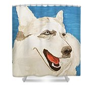 Date With Paint Feb 19 Layla Shower Curtain