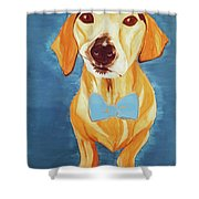 Date With Paint Feb 19 Rafee Shower Curtain