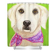 Date With Paint Feb 19 Sally Shower Curtain