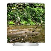 Davidson River Shower Curtain