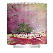 Dawn 09 Shower Curtain