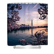 Dawn Blossoms Shower Curtain