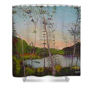 Dawn By The Pond Shower Curtain