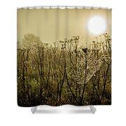 Dawn Dew Shower Curtain
