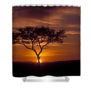 Dawn On The Masai Mara Shower Curtain