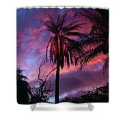 Dawn Palm 03 Shower Curtain