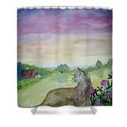 Dawn Patrol Shower Curtain