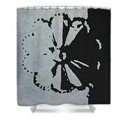Day And Night II Shower Curtain