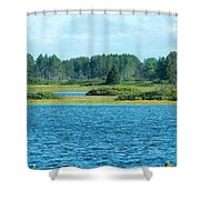 Day At The Wetlands Shower Curtain