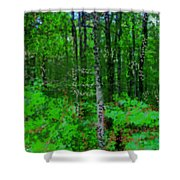 Day Shower Curtain