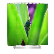 Day Gecko And Pineapple Plant Shower Curtain