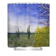 Day In Arizona Desert Shower Curtain