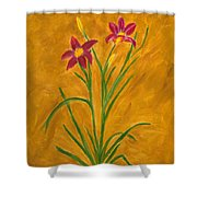 Day Lilies #3 Shower Curtain by Linda Feinberg