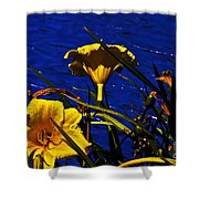 Day Lilies By The Water Shower Curtain