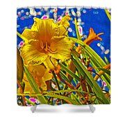 Day Lilies In The Sky With Diamonds  Shower Curtain