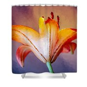 Day Lily Back Shower Curtain