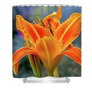 Day Lily Bright Shower Curtain