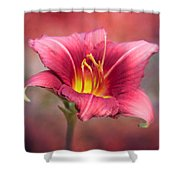 Day Lily Deep Shower Curtain