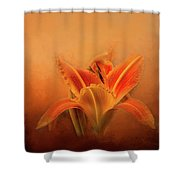 Day Lily Emerging Shower Curtain