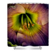 Day Lily In Purple Shower Curtain