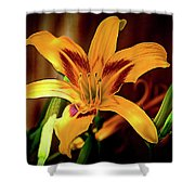 Day Lily Shower Curtain