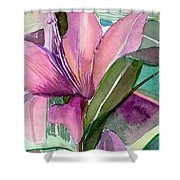 Day Lily Pink Shower Curtain