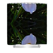 Day Lily Reflection Shower Curtain