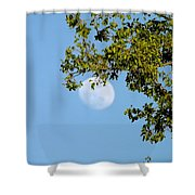 Day Moon #2 Shower Curtain