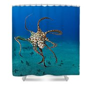 Day Octopus Shower Curtain