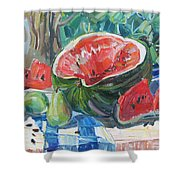 Day Of A Water-melon Shower Curtain