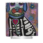 Day Of The Dead Hudson Shower Curtain
