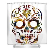 Day Of The Dead Shower Curtain by Michael Colgate