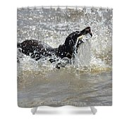 Day On The River Shower Curtain