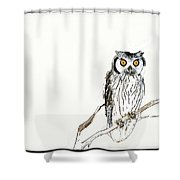 Day Owl Shower Curtain