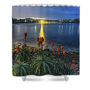 Daybreak And Cloudy Seascape And Aloe Vera Shower Curtain
