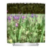 Daydreams In A Meadow Shower Curtain