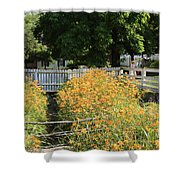 Daylilies In The Spring Shower Curtain